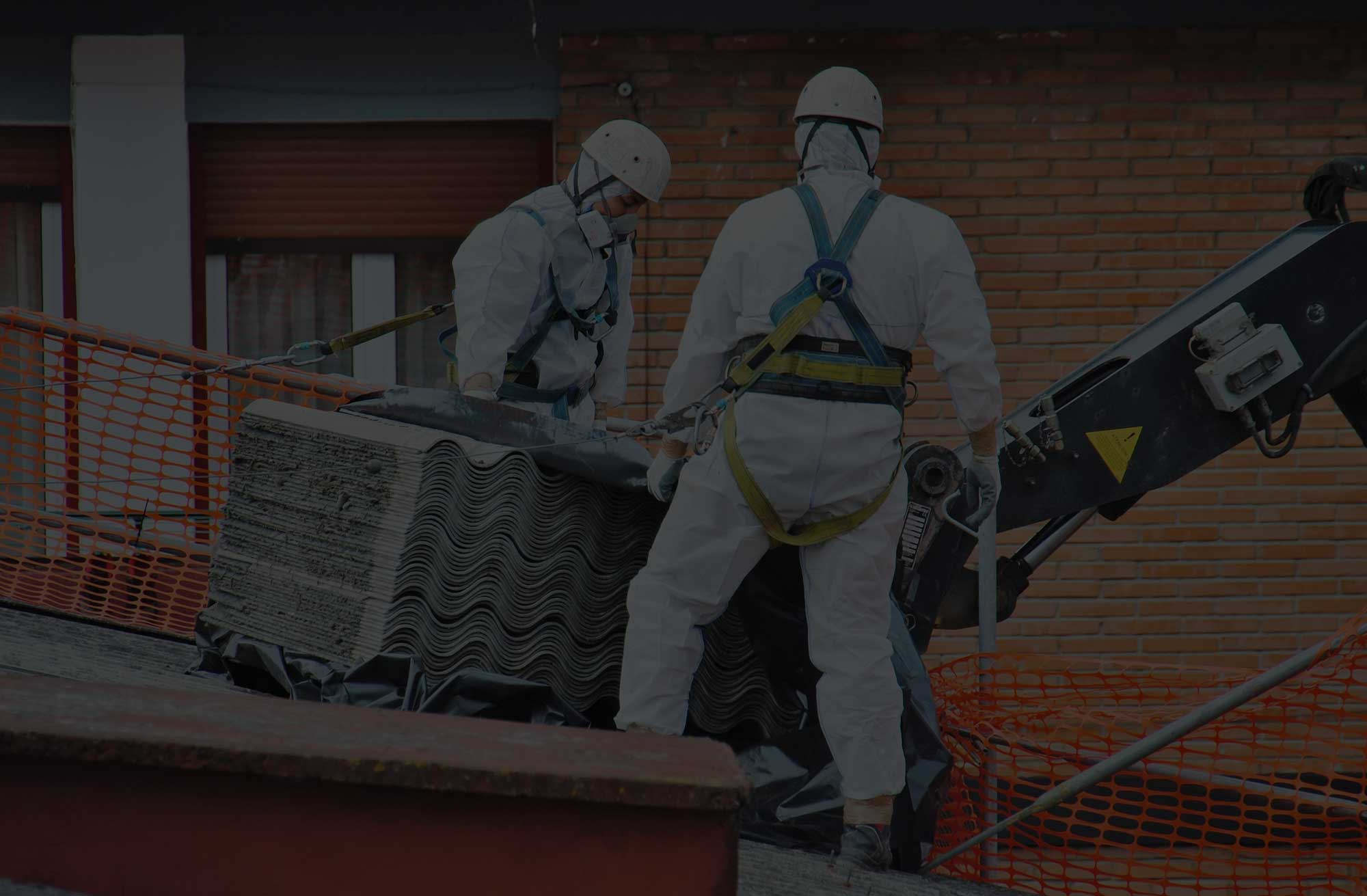 Professional Asbestos Surveys and Removals - Workers remove asbestos