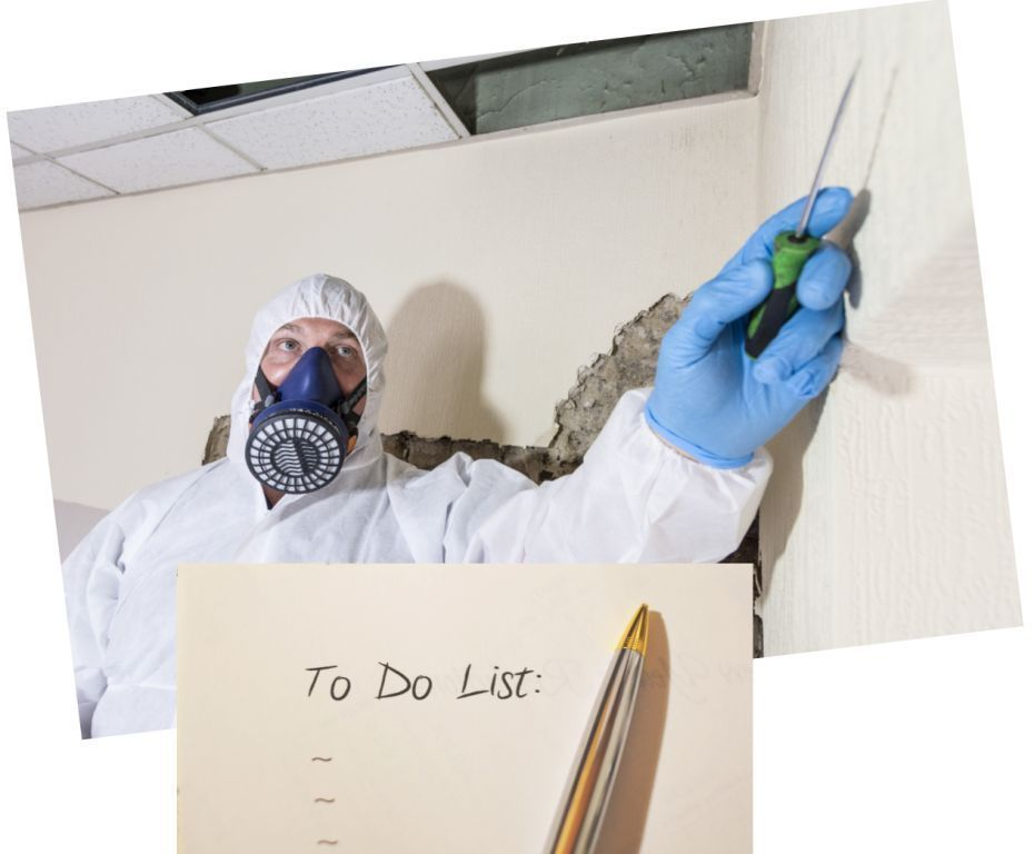 "Why an Asbestos Management Survey Should Be on Your ""To Do"" List"