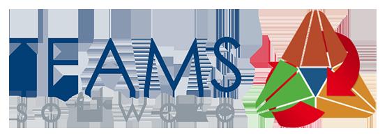 TEAMS Software Logo